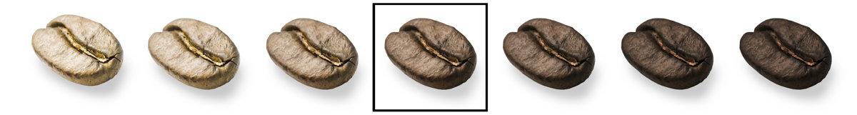 Kafijas pupiņas Pascucci, MILD, 1 kg